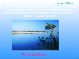 Эта река берет начало на плато Лунди, около 300 км течет по территории Анголы
