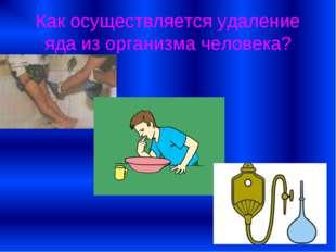 Как осуществляется удаление яда из организма человека?