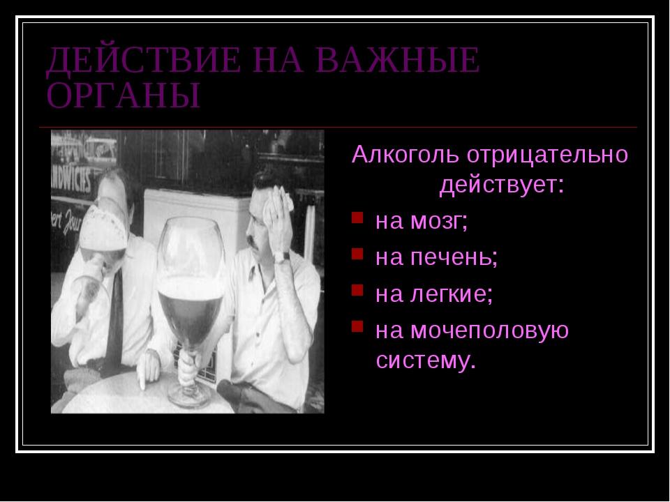 ДЕЙСТВИЕ НА ВАЖНЫЕ ОРГАНЫ Алкоголь отрицательно действует: на мозг; на печень...