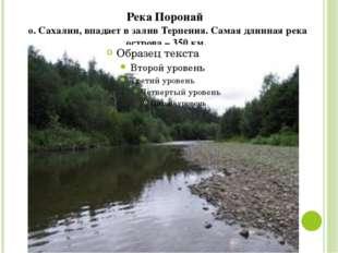 Река Поронай о. Сахалин, впадает в залив Терпения. Самая длинная река острова