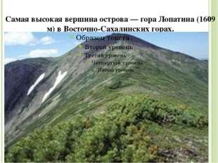 Самая высокая вершина острова — гора Лопатина (1609 м) в Восточно-Сахалинских