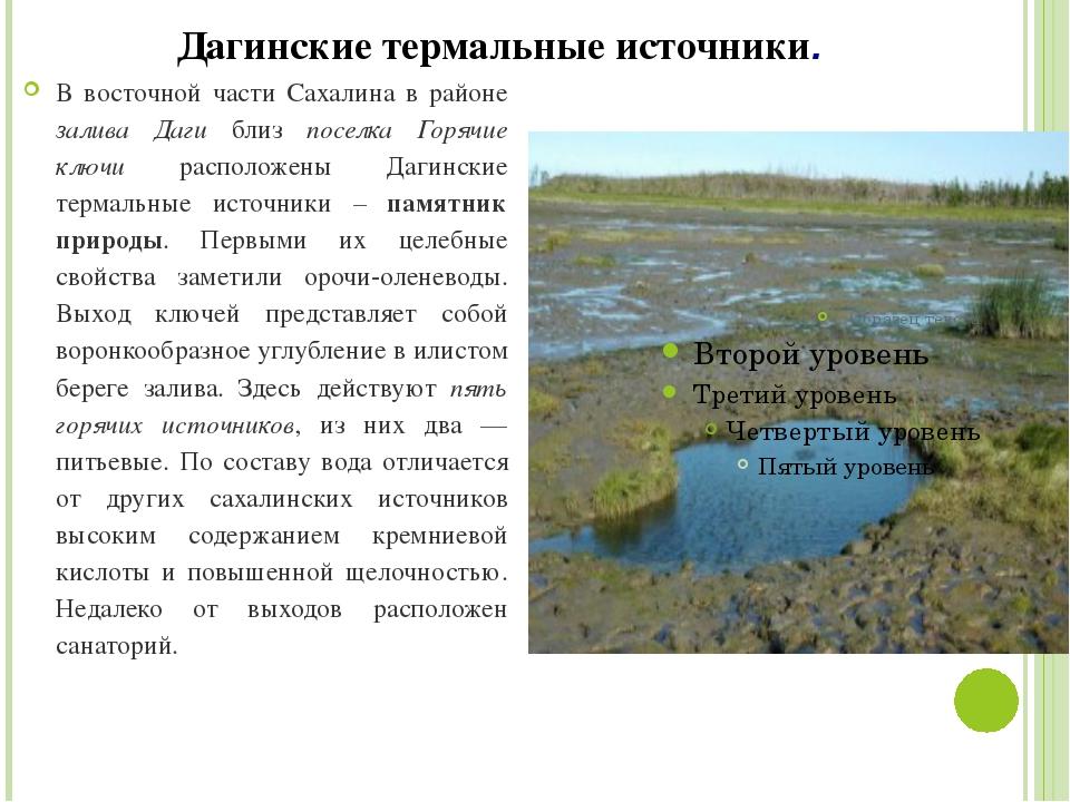 Дагинские термальные источники. В восточной части Сахалина в районе залива Да...