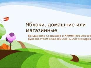 Яблоки, домашние или магазинные Бондаренко Станислав и Клименков Алексей под