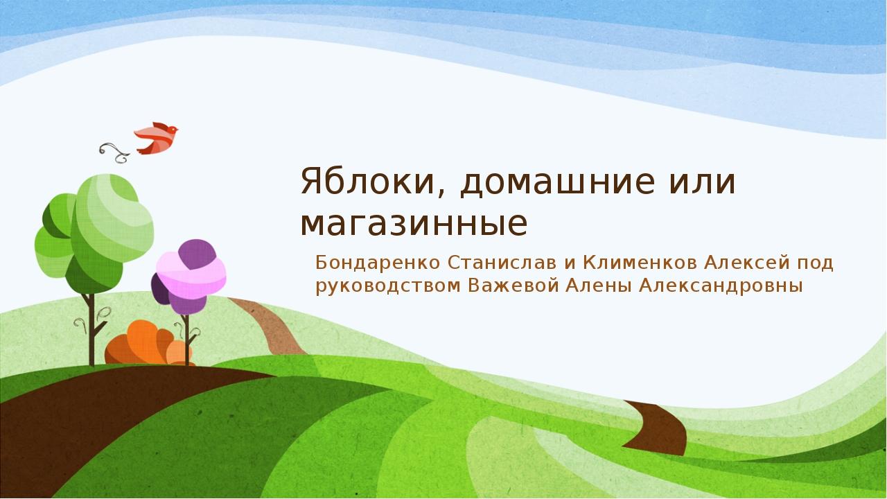 Яблоки, домашние или магазинные Бондаренко Станислав и Клименков Алексей под...