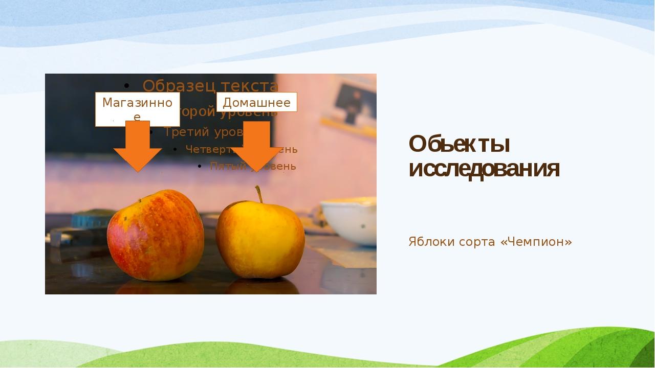 Обьекты исследования Яблоки сорта «Чемпион» Магазинное Домашнее