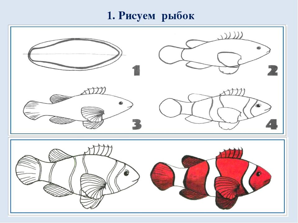 1. Рисуем рыбок