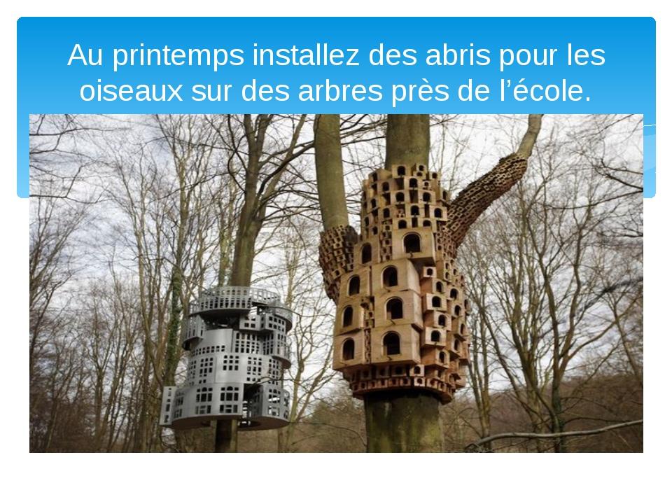 Au printemps installez des abris pour les oiseaux sur des arbres près de l'é...
