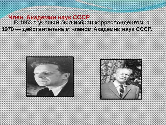 Член  Академии наук СССР         В 1953 г. ученый был избран корреспондентом...