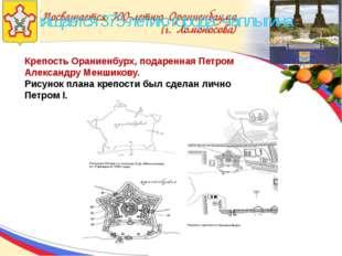 Посвящается 375-летию города Чаплыгина Крепость Ораниенбурх, подаренная Петр