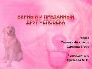 Работа Ученика 4А класса Силаева Егора Руководитель Пухтеева М. В.