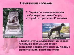 Памятники собакам. В Париже поставили памятник сенбернару по кличке Барри, ко
