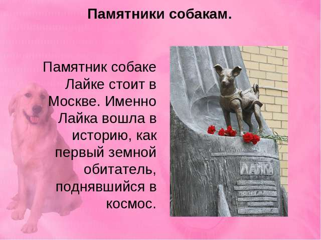 Памятник собаке Лайке стоит в Москве. Именно Лайка вошла в историю, как первы...