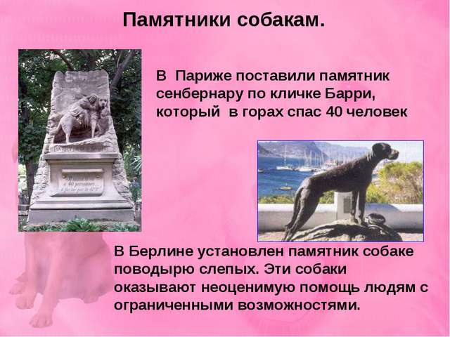 Памятники собакам. В Париже поставили памятник сенбернару по кличке Барри, ко...