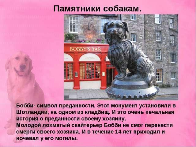 Памятники собакам. Бобби- символ преданности. Этот монумент установили в Шотл...