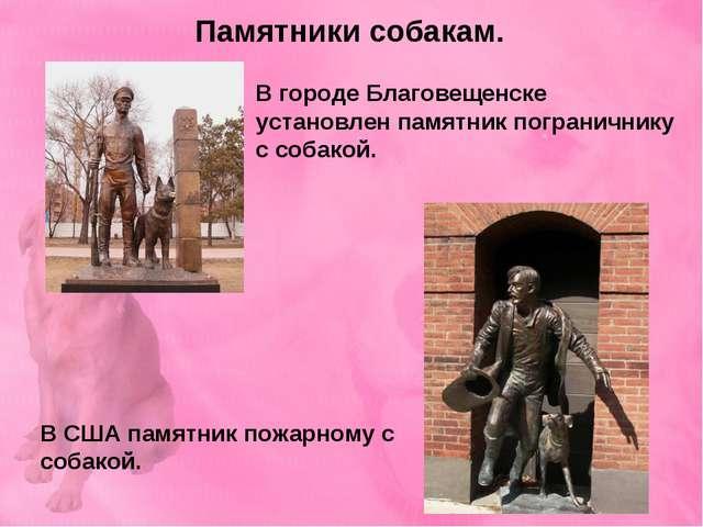 Памятники собакам. В городе Благовещенске установлен памятник пограничнику с...