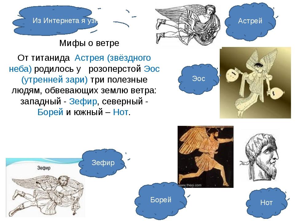 Мифы о ветре От титанида Астрея (звёздного неба) родилось у розоперстой Эос...