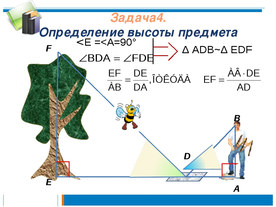 Задача4. Определение высоты предмета А D F E Δ ADB~Δ EDF В < E =