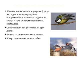 Понаблюдав за птицами я узнала, чем отличаются повадки разных птиц Как они кл
