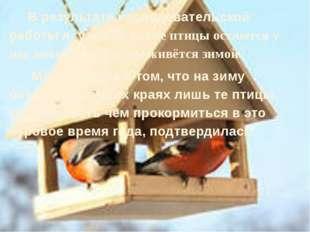 В результате исследовательской работы я узнала, какие птицы остаются у нас з
