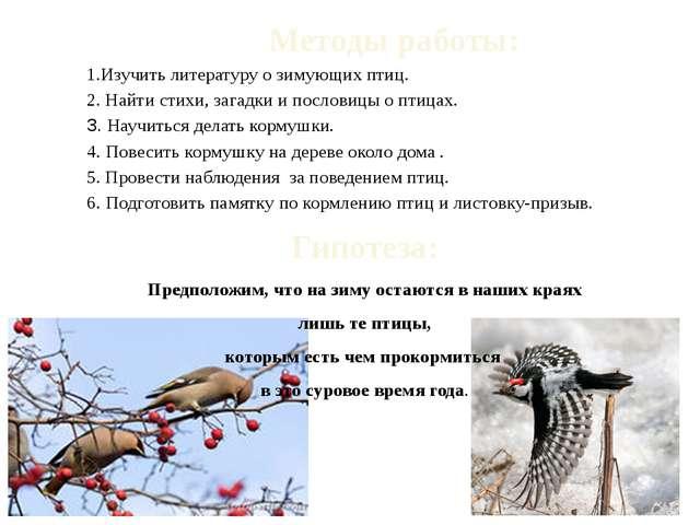 Методы работы: 1.Изучить литературу о зимующих птиц. 2. Найти стихи, загадки...