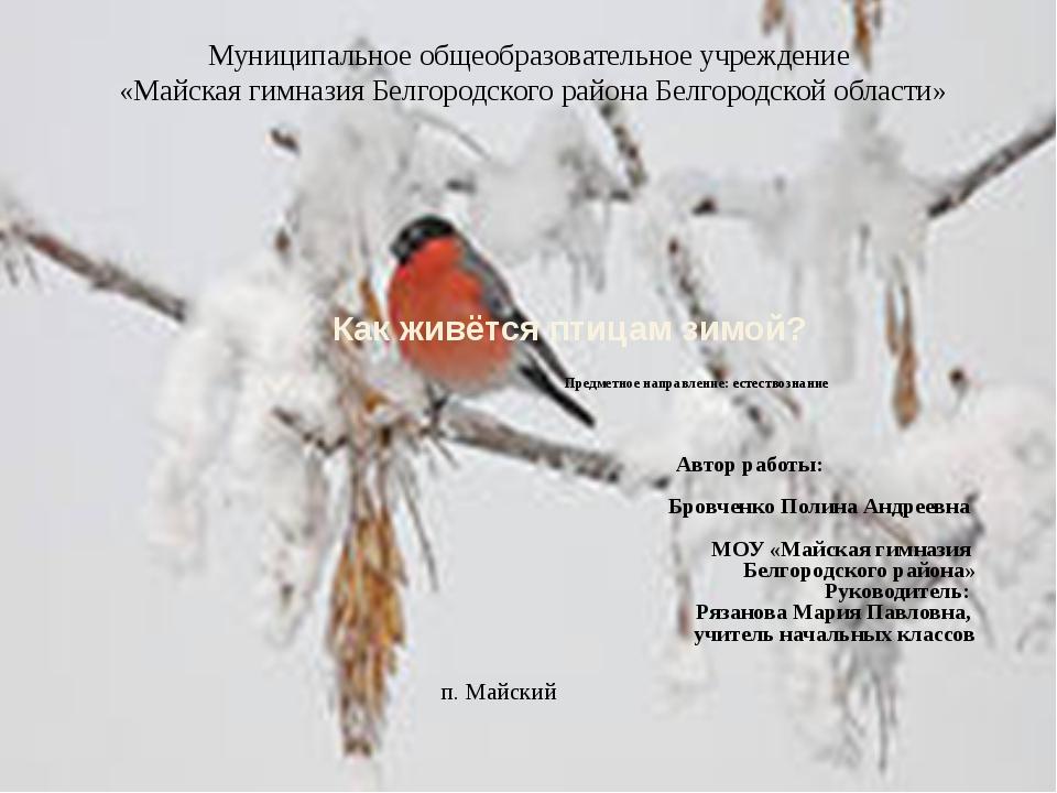 Как живётся птицам зимой? Предметное направление: естествознание Автор рабо...