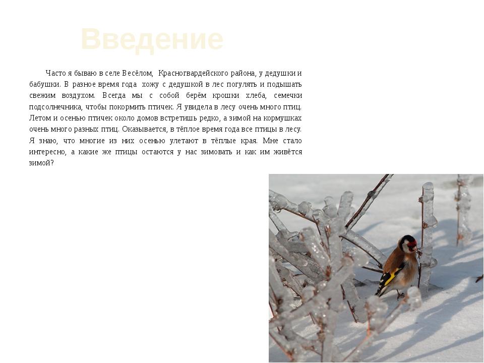 Введение Часто я бываю в селе Весёлом, Красногвардейского района, у дедушки и...