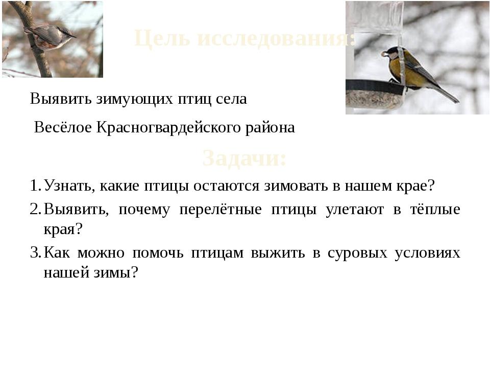 Цель исследования: Выявить зимующих птиц села Весёлое Красногвардейского райо...