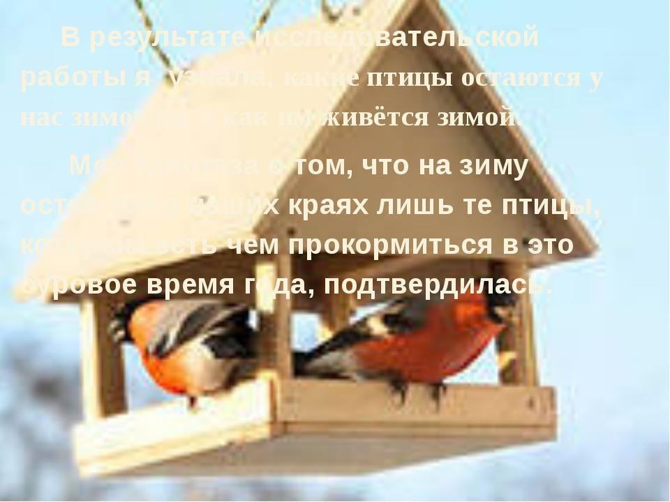 В результате исследовательской работы я узнала, какие птицы остаются у нас з...