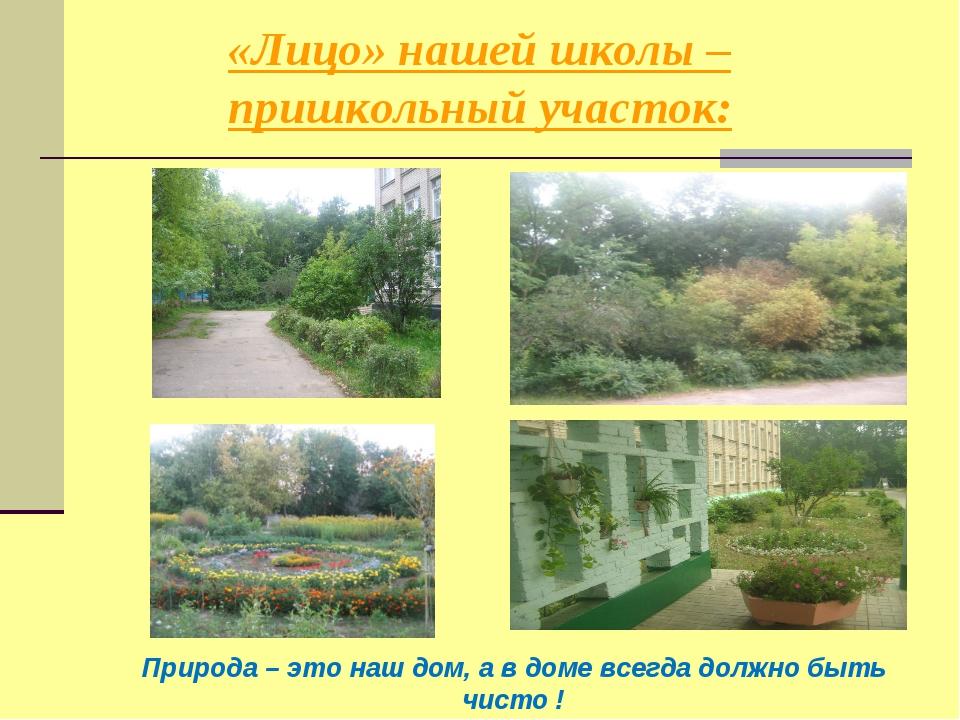«Лицо» нашей школы – пришкольный участок: Природа – это наш дом, а в доме все...