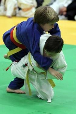 Родителям о соревнованиях в дзюдо