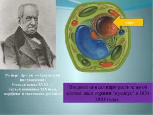 Ро́берт Бро́ун — британский (шотландский) ботаник конца XVIII — первой полови