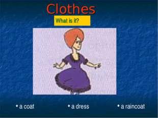 Clothes What is it? a coat a dress a raincoat