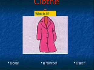 Clothes What is it? a coat a raincoat a scarf