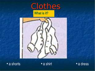 Clothes What is it? a shorts a shirt a dress