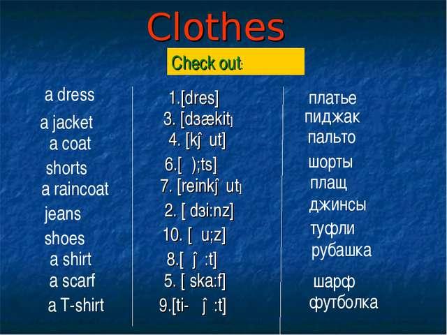 Clothes a dress a raincoat a scarf shoes a shirt jeans a T-shirt shorts a jac...