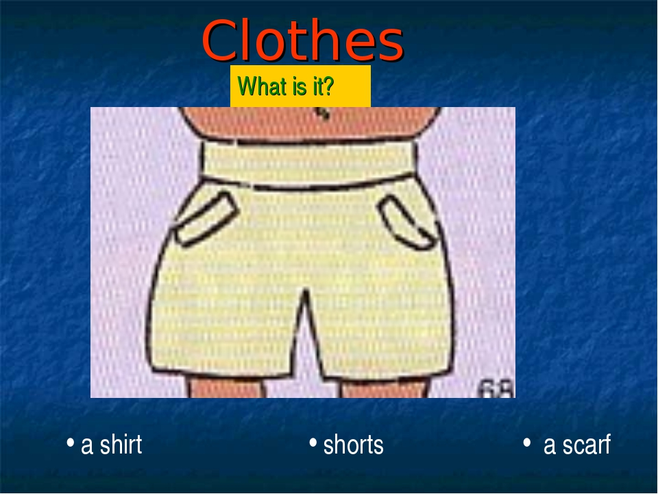 Clothes What is it? a shirt shorts a scarf