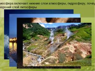 Биосфера включает нижние слои атмосферы, гидросферу, почву, верхний слой лито