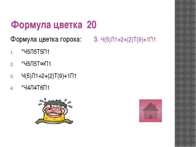 Формула цветка 40 Формула цветка шиповник: О3+3Т3+3П(3) *Ч5Л5Т∞П∞ *Ч(5)Л(5)Т5...