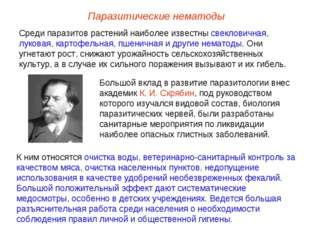 Большой вклад в развитие паразитологии внес академик К. И. Скрябин, под руков