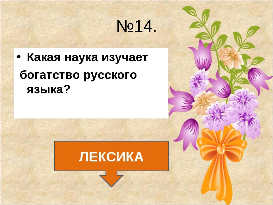 №14. Какая наука изучает богатство русского языка? ЛЕКСИКА