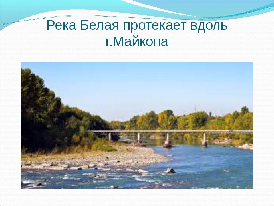 Река Белая протекает вдоль г.Майкопа