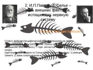 2. И.П.Павлов, Г. Селье – роль внешних факторов, истощающих нервную систему С