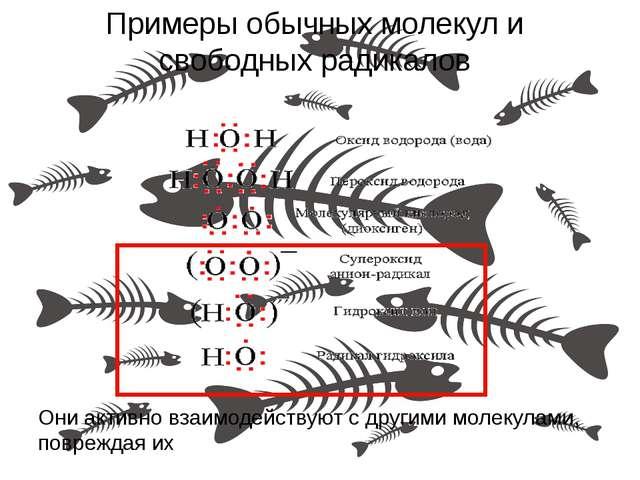 Примеры обычных молекул и свободных радикалов Они активно взаимодействуют с д...