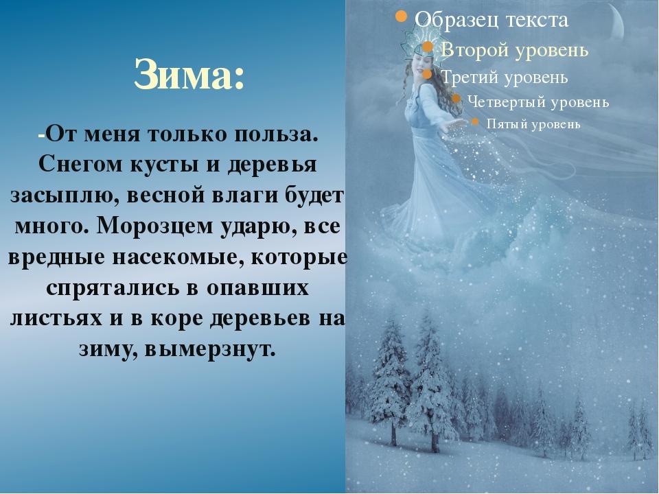-От меня только польза. Снегом кусты и деревья засыплю, весной влаги будет мн...
