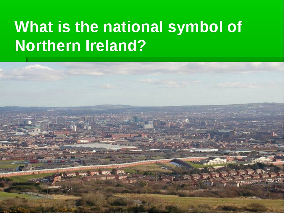 What is the national symbol of Northern Ireland?