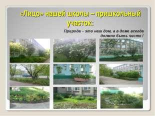 «Лицо» нашей школы – пришкольный участок: Природа – это наш дом, а в доме все