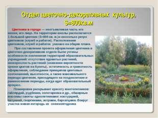 Отдел цветочно-декоративных культур, S=800кв.м Цветники в городе — неотъемлем