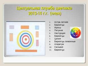 Центральная клумба цветника 2013-14 г.г. (план) Астра летняя Бархатцы Ирисы П