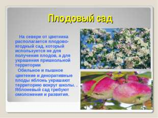 Плодовый сад На севере от цветника располагается плодово-ягодный сад, который