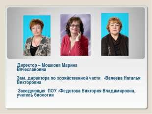 Директор – Мошкова Марина Вячеславовна Зам. директора по хозяйственной части